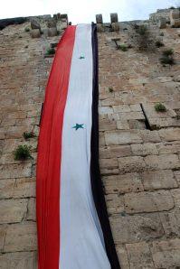 homs-1