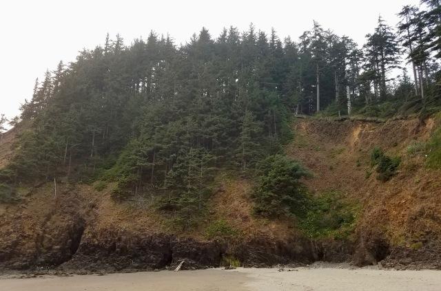 cropped beach scene